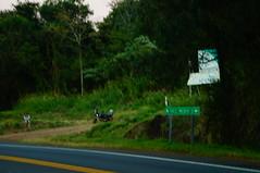 Entre paseos y coberturas (Cristian Milciades) Tags: sony a57 photo misionesphotofotonature misiones andresito costanera posadas rural periodismo