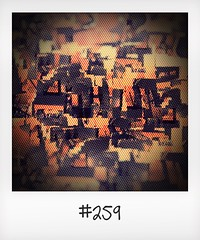"""#DailyPolaroid of 13-6-16 #259 • <a style=""""font-size:0.8em;"""" href=""""http://www.flickr.com/photos/47939785@N05/28917129315/"""" target=""""_blank"""">View on Flickr</a>"""