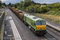I 216 Westport-Waterford timber, Kildare (Eiretrains) Tags: 201class belmond kildare timber iarnrdireann irishrail irishrailways ireland generalmotors diesellocomotive timbertrain freighttrain