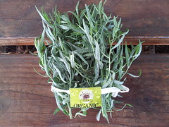 Tarragon_loosely bunched_800