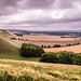 Pewsey+Downs+-+Wiltshire%2C+England+-+Fine+art+photography