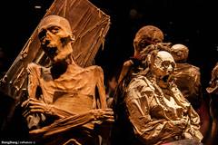 Momias de Guanajuato (cefuenco) Tags: color guanajuato mummies momias originalphotographer
