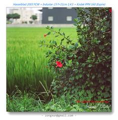Industar-23 110F45-21410010 (猜猜 Guess TSAI) Tags: 2003 red lens kodak hasselblad p ussr 145 expire 160 ppn 110mm 11045 fcw industar23u