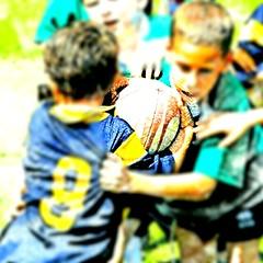 I love this game (marco guglielmi) Tags: italy sport italia rugby persone amicizia vittoria fatica sudore agonismo settimotorinese rugbista lealt rugbisti settimorugby trofeodellatorre