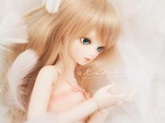 my angel (TURBOW) Tags: doll jasmine bjd msd bluefairy balljointeddoll tinyfairy blossombud beautywhiteskin dollflower