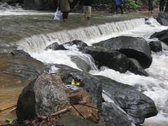 IMG_5425 (Gokul Chakrapani) Tags: waterfalls karnataka westernghats bolle charmadi