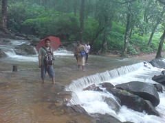 DSC03561 (Gokul Chakrapani) Tags: waterfalls karnataka westernghats bolle charmadi