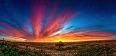 Epic Sunset (thecreativeshutter) Tags: travel sunset panorama clouds washington butte palouse steptoe