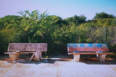 Algria (series) #40 (ale2000) Tags: vsco k3 empty emptiness bench emptybench green sicily sicilia marinella estate summer