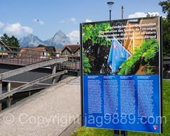 'Organization of the Swiss Abroad'  Presentation Board, Brunnen SZ on Lake Lucerne, Switzerland (jag9889) Tags: 1991 2016 20160721 aso alpine areafortheswissabroad auslandschweizerorganisation auslandschweizerplatz board brunnen ch cantonschwyz centralswitzerland europe foundation helvetia innerschweiz lake lakelucerne monument mountain mythen outdoor park poster presentation schweiz schwyz square suisse suiza suizra svizzera swiss swisspath switzerland text vierwaldstttersee zentralschweiz jag9889