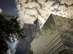 New Life on the horizon. (oscararestrepo) Tags: outdoor wtc freedomtower