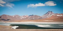 Laguna (ckocur) Tags: chile atacama sanpedrodeatacama northernchile atacamadesert