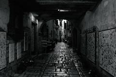 Oldtown (Krsz-Kiss Pter) Tags: bw blackandwhite blackwhite blackandwhitephotography monochrome mono croatia rovinj sea oldtown town street streetphoto streetphotography streetsofmine streetmono urban urbanexploration wide wideangle 1635 canon dawn morning