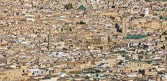 Fez Cityscape (Ellsasha) Tags: northafrica morocco cityscape fez