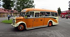 Alton Bus Rally & Running Day 2016 (Steven K. Hearn) Tags: altonbusrallyrunningday2016 buses preservedbuses publictransport ansteypark alton hampshire england bedfordob agespast duple shamrockrambler
