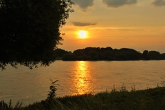 Sonnenuntergang bei Dsseldorf Wittlaer im Juli 2016 (Haeppi) Tags: sonnenuntergang sunset sonne sun dsseldorf wittlaer germany deutschland natur nature rhein rhine