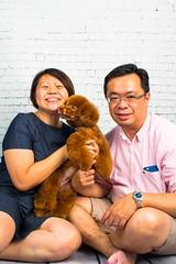 MATCHA LOW-11 (Michiez Chua Petography) Tags: poodle toypoodle singaporedog singapore redpoodle cute dog dogs canon 35mm studio studioshoot dogshoot