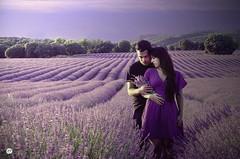 Un ultimo adios (Lara Garca Corrales) Tags: couple woman man field lavender landscape nature natural purple love hate complicity flowers green trees dress