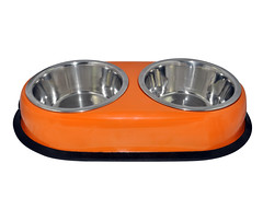 SKU 1700. aGLOW Anti Skid Twin Oval Dish (Orange) (TranscendentPet) Tags: dogs cats dog cat rabbit guinea pig birds parrot petbowls feeders waterers feedingtime