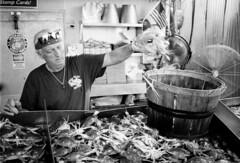 2016-08-19-0003 (wallacephotography) Tags: expiredfilm blackandwhitephotography blackandwhite bokeh washingtondc portrait filmgrain wedding dcfishmarket marylandbluecrab mdcrab crab