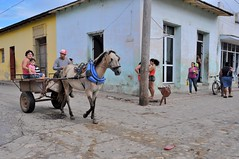 Ils viennent à Trinidad dans une carriole à cheval -They went to Trinidad by horse-drawn buggy. (Olivier Simard Photographie) Tags: carrioleàcheval cuba trinidad caraïbes carriole rue homme femme enfant cheval stylecolonial colonial unesco casa pastels patrimoinemondialdelhumanité trinidaddecuba sanctispiritus communisme castro nikond90 calle magasin pauvreté scénedevie scènederue horsedrawncarriage caribbean buggy street man wife child horse worldheritageofhumanity communism shop poverty sceneoflife streetscene famille family carrotiradoporcaballos caribe hombre mujer niño caballo estilocolonial pasteles patrimoniomundialdelahumanidad sanctispíritus comunismo tienda pobreza escenadelavida escenadelacalle