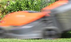 No 21 speed mowing (happysnapper591) Tags: mowing mower garden outside slow shutter speed motion