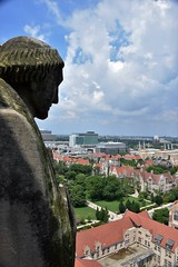 Elevated View (marensr) Tags: view skyline roofs gargoyle carving rockefeller memorial chapel uchicago university chicago gothic architecture