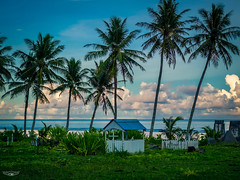 Rest In Paradise (Laith Stevens Photography) Tags: rest peace paradise cemetery rip tropics tropical nauru island palm trees clouds grass blue south pacific olympus omd em1 1240mm f28 pro resting place beautiful peaceful final