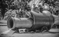 O Menino e o Trem (Serlunar (tks for 5.0 million views)) Tags: trenzinho no parque serlunar ibirapuera