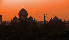 Darkening Taj Mahal in Silhuoette, Agra, India (gudonjin) Tags: india world heritage asia historic building birds