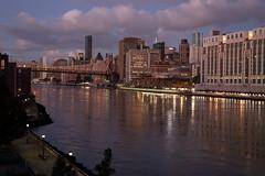 Morning Light 1 (Roosevelt Island/NYC) (chedpics) Tags: newyork rooseveltisland eastriver