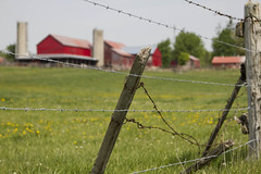 Broken Fence for Fence Friday (a56jewell) Tags: red barn fence spring wire may amish redbarn a56jewell