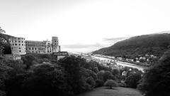 Heidelberg Schloss (Ammar Daly) Tags: landscape blackwhite heidelberg schwarzweiss schloss landschaft castel