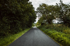 Back Roads (Adam_Marshall) Tags: trees adam marshall outdoors summer landscape road stereocolours nature adammarshall canon eos70d sigma 1750mmf28 countryside cambridgeshire glatton perspective vast empty