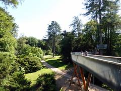 Westonbirt Arboretum (Paul F 36) Tags: westonbirtarboretum westonbirt arboretum