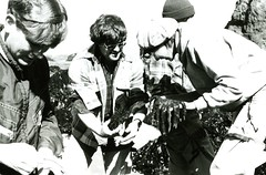 Students hold marine wildlife (PUC Special Collections) Tags: california coastal mendocino 1960s norcal 1970s biology tidepools puc albion seaurchin estuaries mendocinocounty pacificunioncollege albionfieldstation albionbiologicalfieldstation pucbiologydepartment