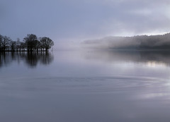 Where a fish just leapt (kenny barker) Tags: mist scotland lochard kinlochard