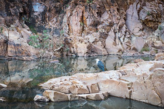 MacDonnell Ranges Redbank Gorge Northern Territory-3
