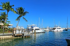Key West (Florida) Trip 2015 7786Rif 4x6 (edgarandron - Busy!) Tags: florida keys floridakeys keywest harbor harbors