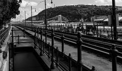 Railway along Tonava, Budapest (Kinseri) Tags: blackwhite bw railway tonava budapest hungary landscape canon g16 city