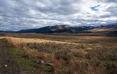 sun spots (ekaterinasavrasova) Tags: yellowstone mountans nature field autumn
