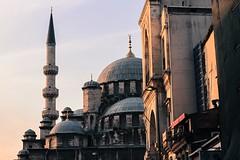 Golden Mosque - Istanbul 2015 (Marine Truite) Tags: marine truite truitemarine marinetruite photographe photographer photographie photography istanbul mosque architecture culture trip landscape light sunset sunrise