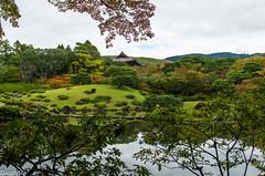 09102014-_IGP8187 (ducatst2) Tags: nara isuien japon2014