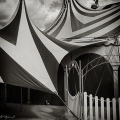 Cirque 4 (steb751) Tags: paris noiretblanc nb capitale cirque foire divertissement formatcarr chpiteau compositionettypedephoto motsclsgnriques
