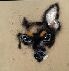 Toy Terrier work in progress (Needle Feltings by - Dexihexi Pouch Puppies) Tags: dogs felting terrier woolpainting toyterrier felteddog dexihexipouchpuppies
