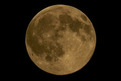 Last night full moon (fxdx, off for holiday (mostly) :-)) Tags: last night full moon p900