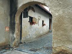 Cobblestones (Grazerin/Dorli B.) Tags: ceskykrumlov czechrepublic street arch detail elements texture wall cobblestones