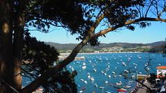 Ra de Cedeira. (lumog37) Tags: estuary ra costadegalicia costa coastline
