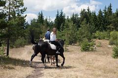 5D_IMG_6537 (Jeroen Kransen) Tags: bulgarije bulgaria    horse horseback equestrian horseriding paardrijden paardrit rodopen rhodopes