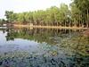 Madhabpur Lake (D-Stanley) Tags: madhabpur lake srimongal bangladesh